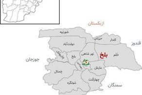 طالبان به نزدیکی مرز ازبکستان رسید!+جزییات