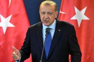 اظهارات اردوغان کار دستش داد/صدای آمریکا و اروپا در آمد!