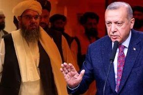 گفتوگوی جدید ترکیه و طالبان/ موضوع چیست؟