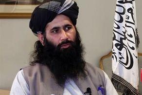واکنش جدید طالبان درخصوص پناه دادن به سرکرده القاعده!+ جزییات