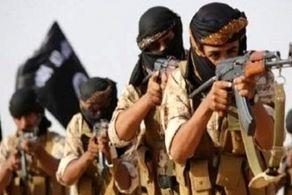 داعش وارد جنگ یمن شد/ اعلام فراخوان بزرگ برای جنگ با امارات!