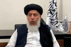 تاریخ معرفی دولت طالبان مشخص شد