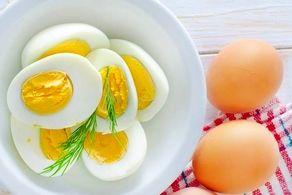 قیمت هر شانه تخم مرغ 55 هزار تومان!