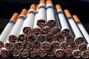"""کشف 46 هزار نخ سیگار قاچاق در """"پایانه غرب"""""""