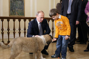 ژاپنی ها می خواهند سگ اهدایی به پوتین را پس بگیرند