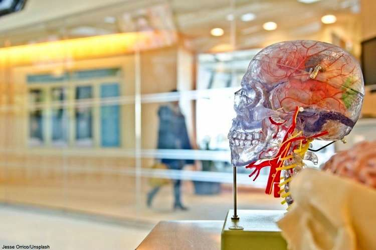 یک داروی سرطان میتواند باعث رفع نشانه آلزایمر شود