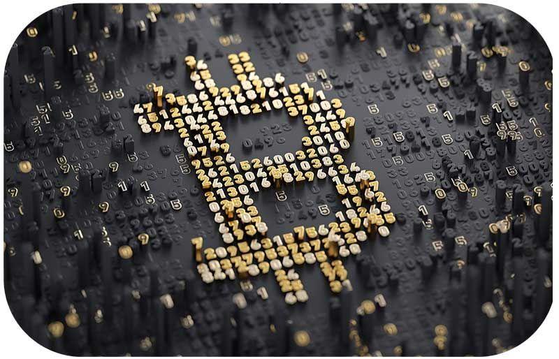 رقیب جدید ایلان ماسک / راز پولدار شدن ثروتمندترین مرد جهان فاش شد
