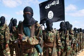 گروهی از حامیان داعش دستگیر شدند+جزییات