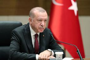 اردوغان بر سرنوشت مشترک ترکیه و مصر تاکید کرد